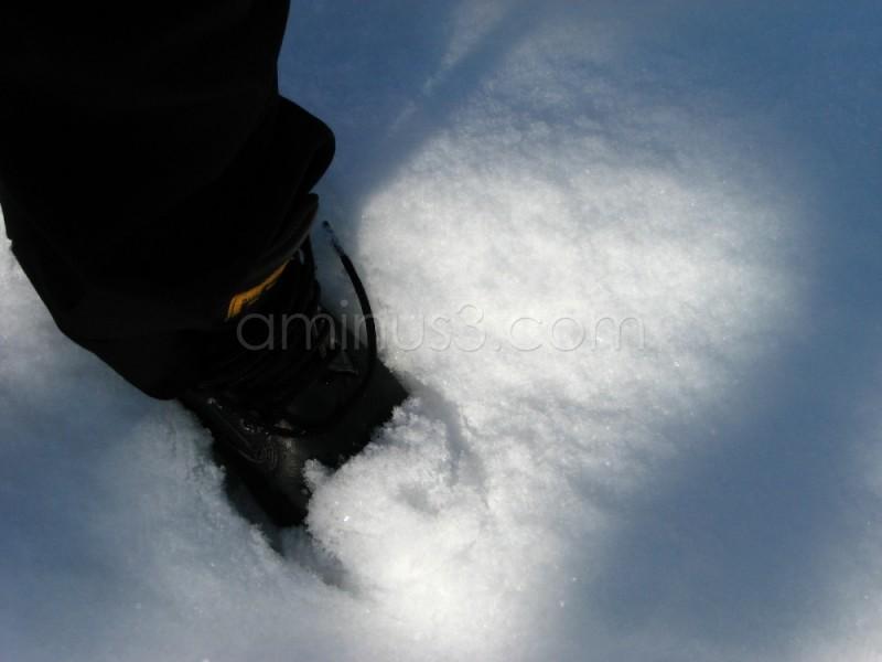 standin' in snow