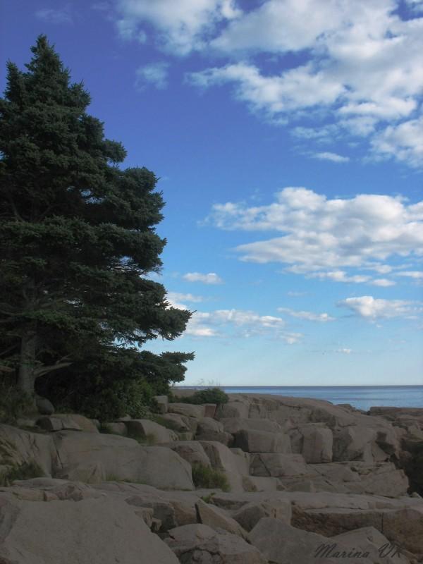 Acadia park, Maine, 2006