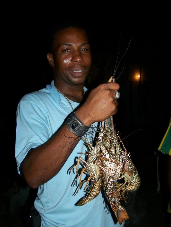 Lobster Anyone