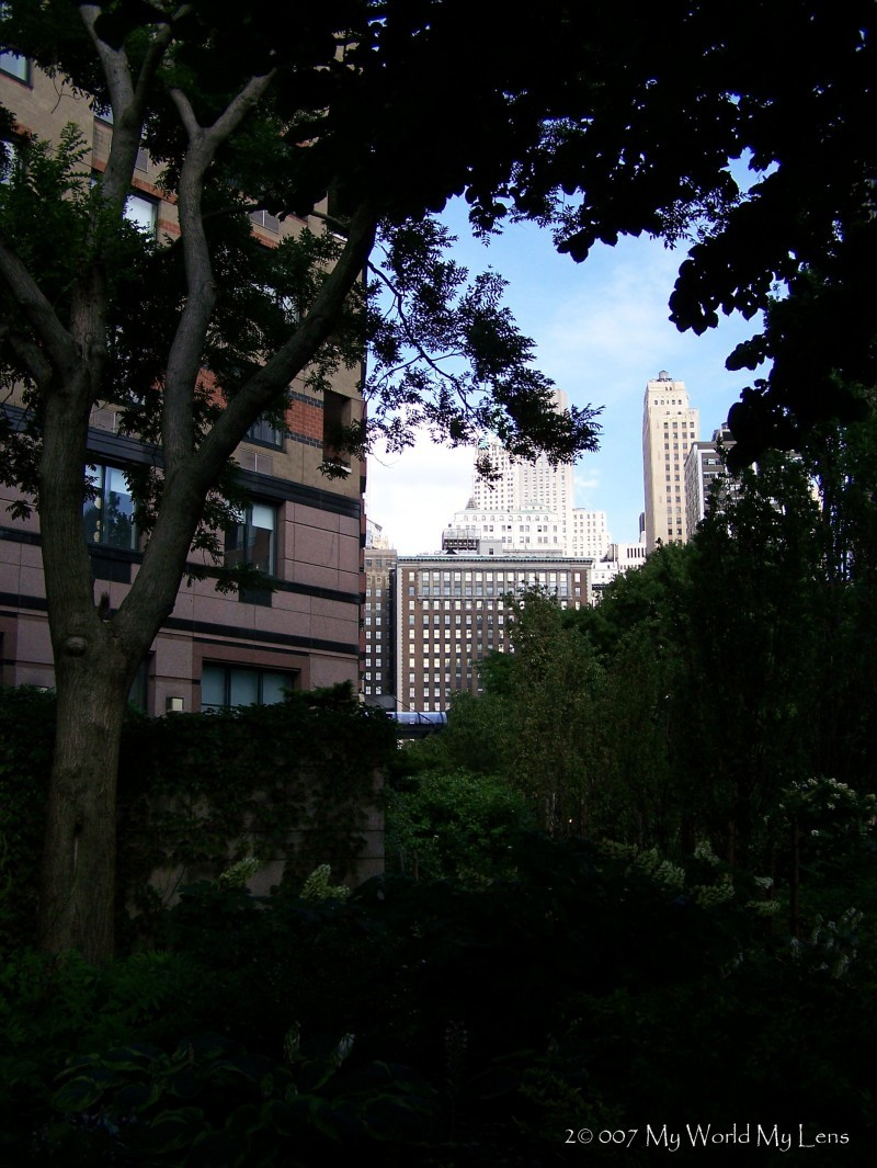 NYC: The City Beyond the Park