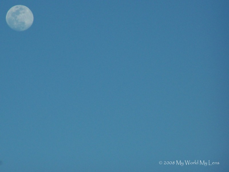 It was A Bright Moony Day!