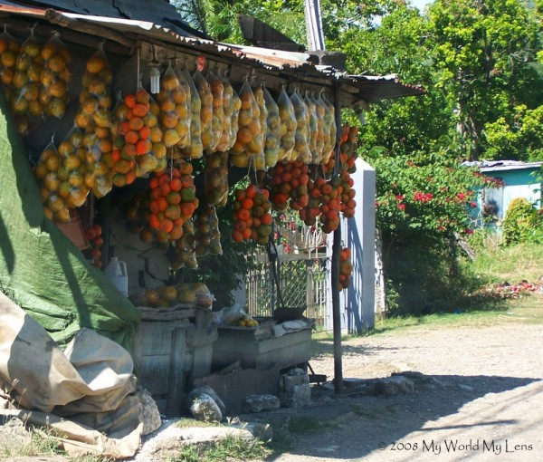 Roadside Tangerines