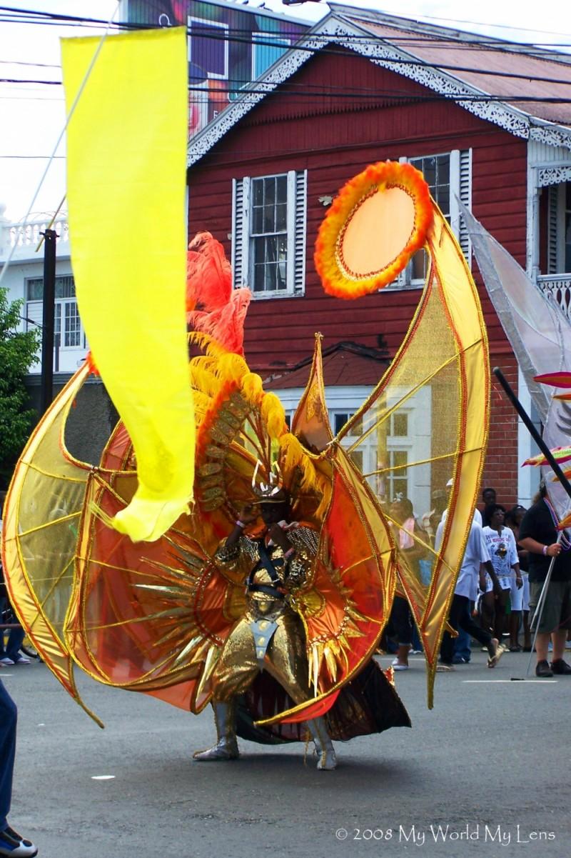Carnival 2008 (I)