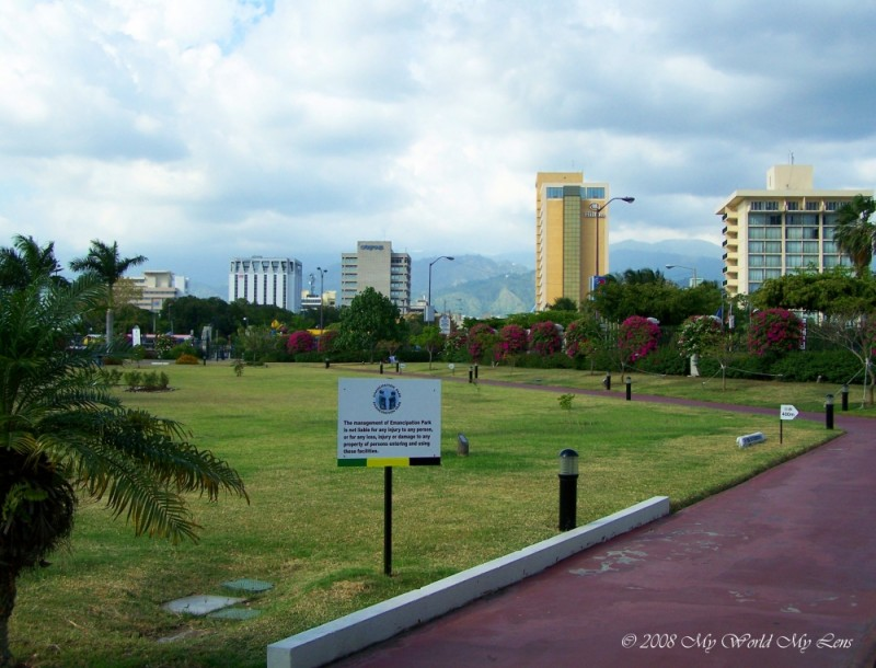 New Kingston from the Park