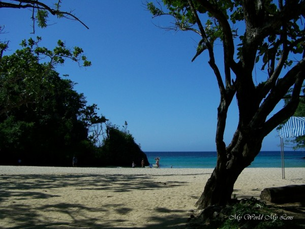 The Beach from the Shade