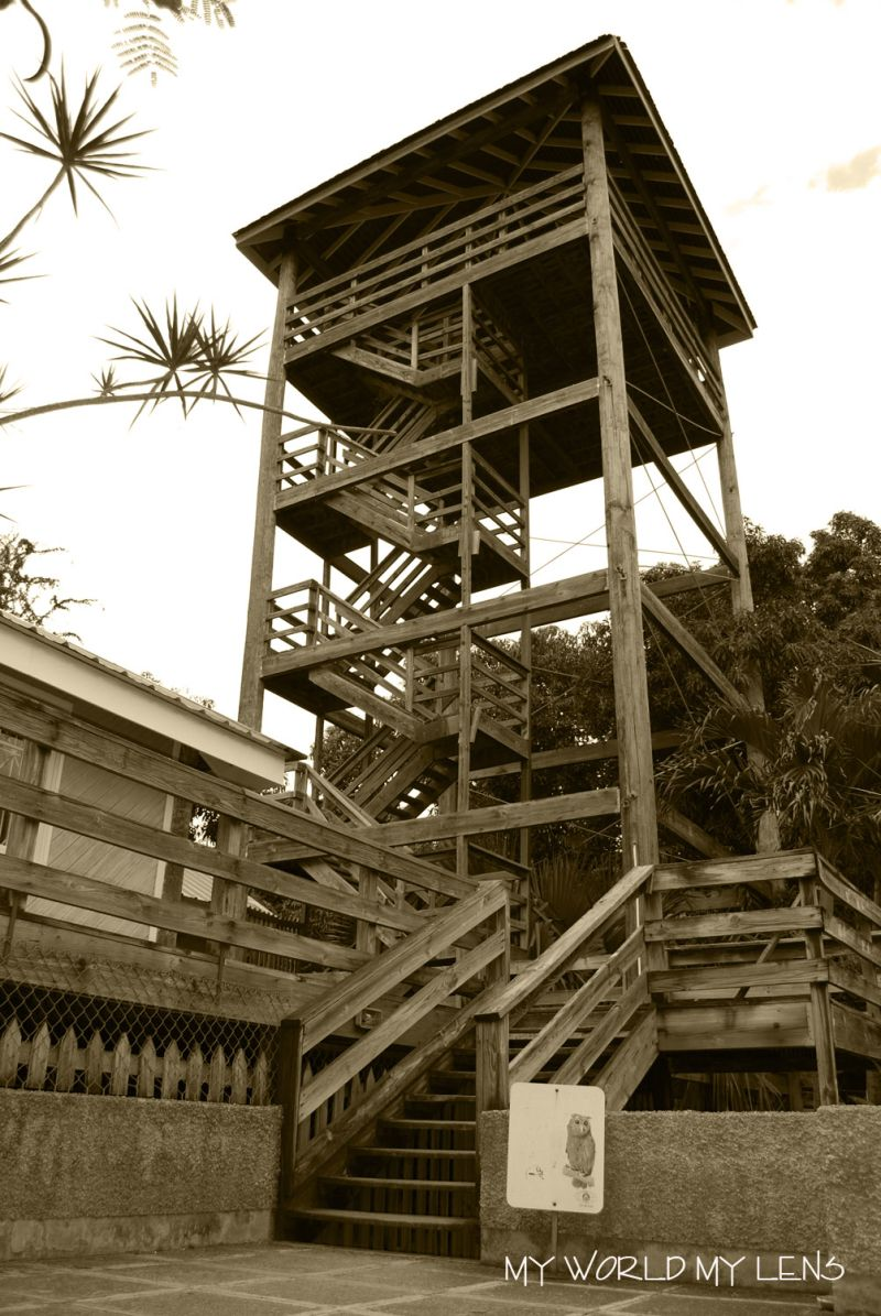 The Wooden Tower