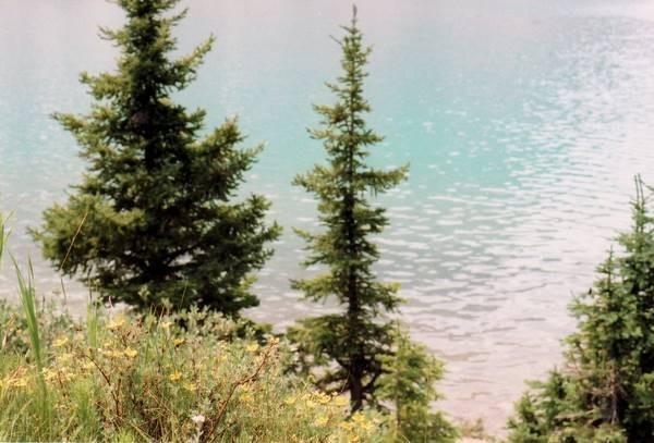 Pastel River