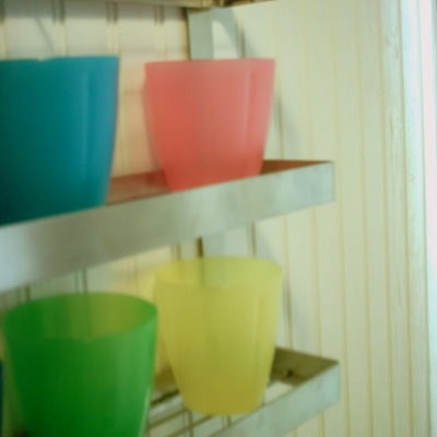 The colorful cups