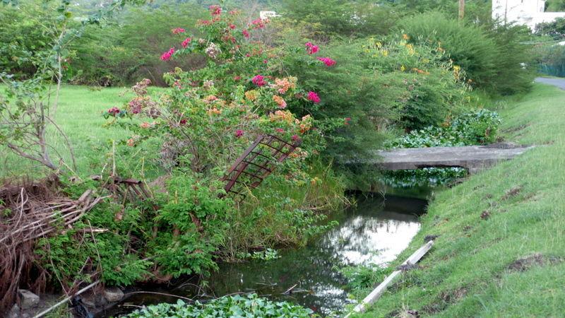 A footpath in Grenada
