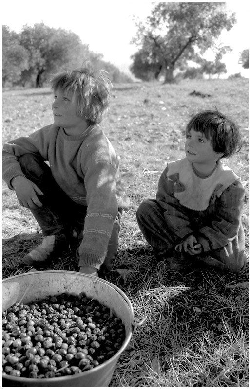 olive children