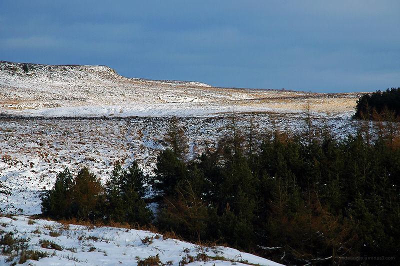 Beeley Moor