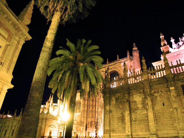 Night shot of Seville Cathedral