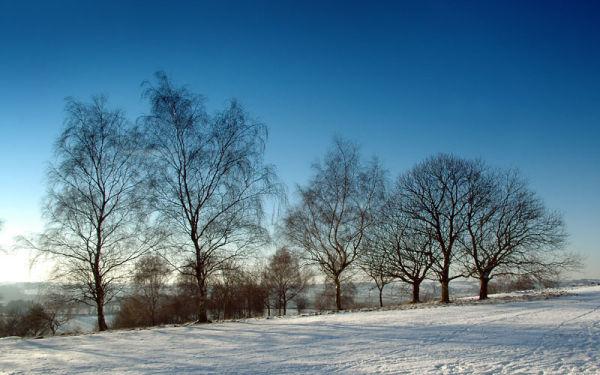 bright snow