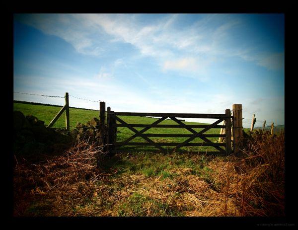 gateway to the sky