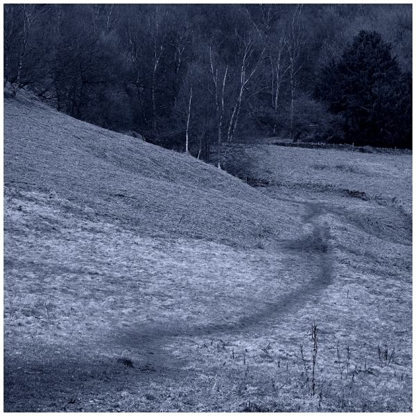 Field Paths in March