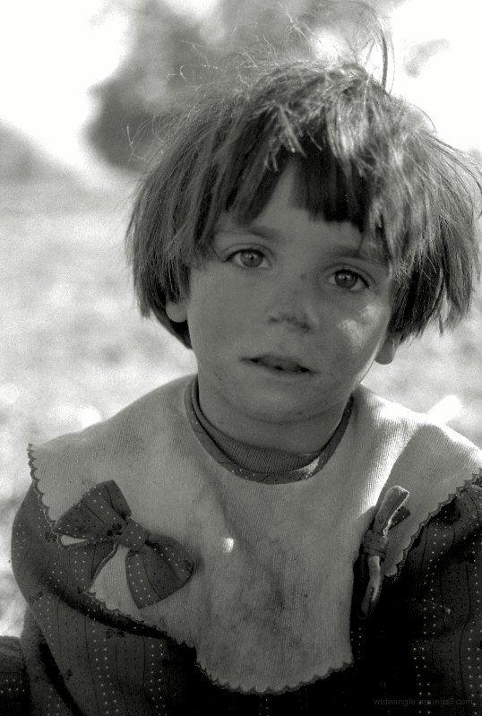 girl in olive grove, spain