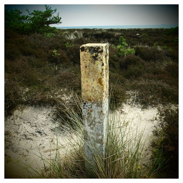 Yellow Concrete Post, Studland