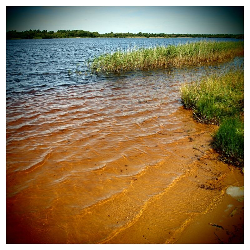 red sea inland sea little sea