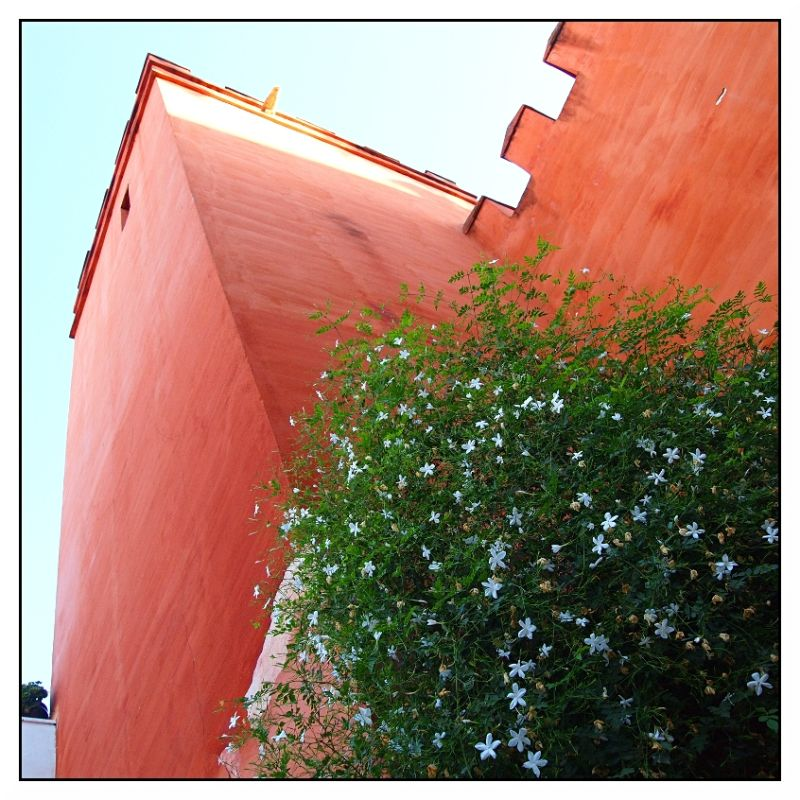 Walls Alcazarez Seville Spain
