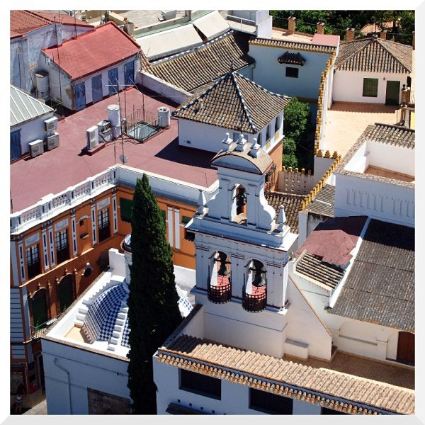 above city rooftop seville spain