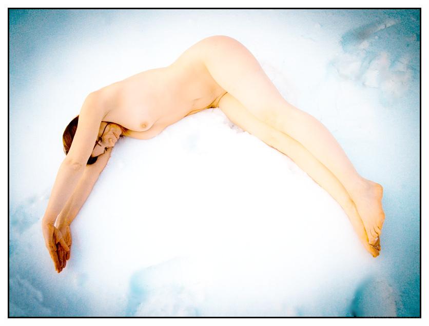 swim in ice like dolphin