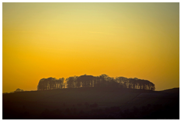 sunset trees dovedale