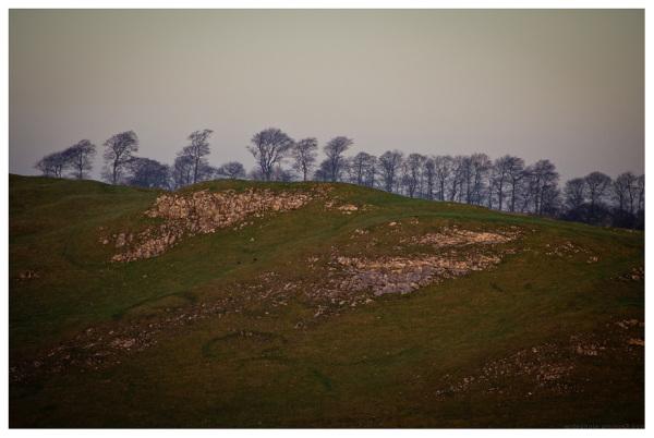 treeline dovedale derbyshire
