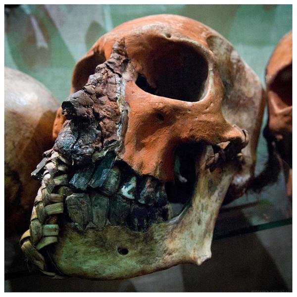 skull pitt rivers oxford ritual death