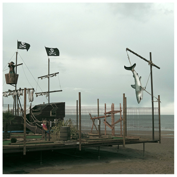 shark pirate seaside shiver my timbers