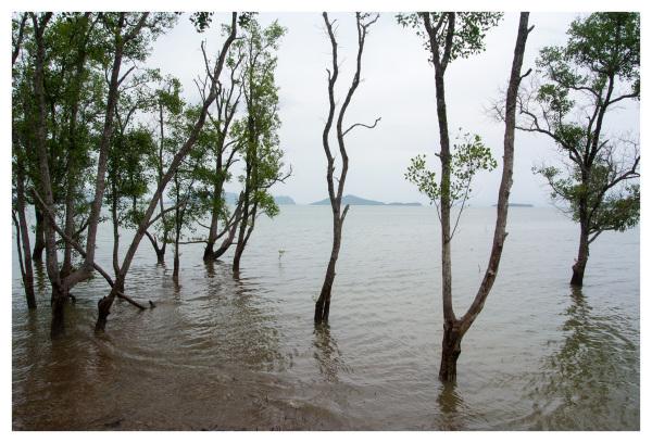 Andaman Sea Koh Lanta East Coast