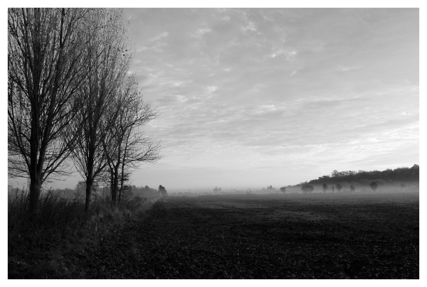 mist fields beeston river trent