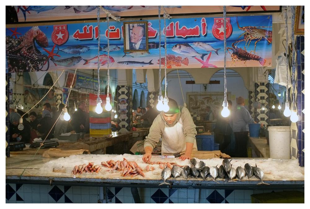 fish counter sousse tunisia