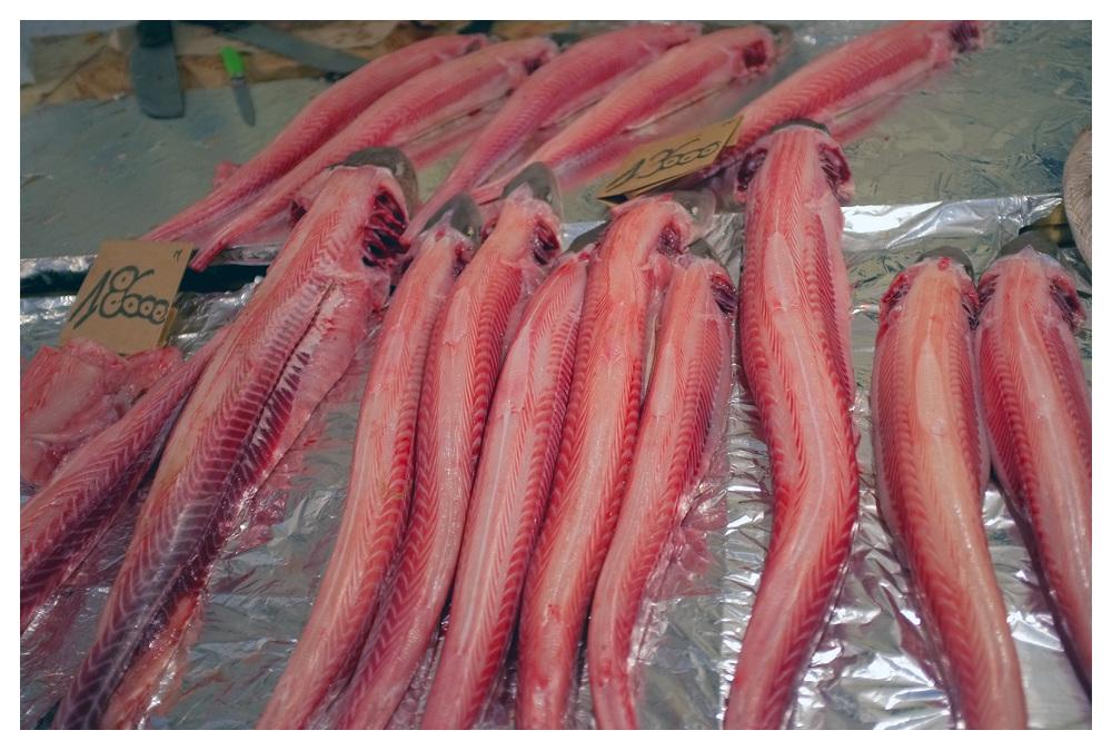 skinned fish sousse tunisia
