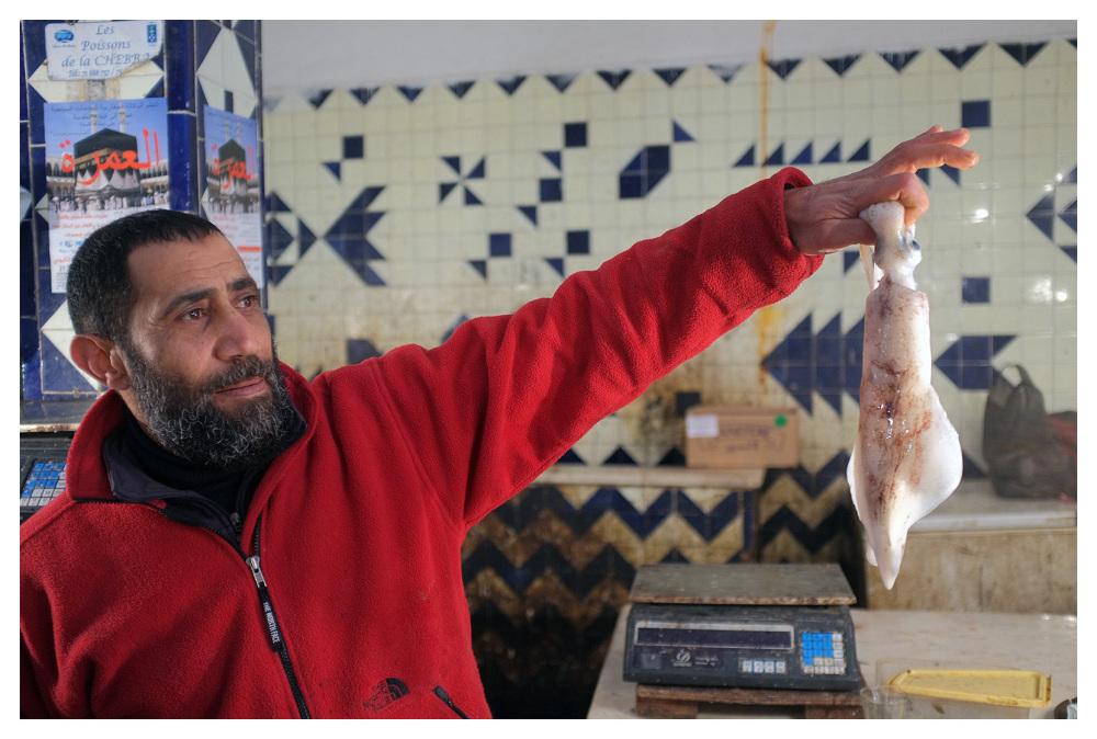 fishmonger squid sousse tunisia