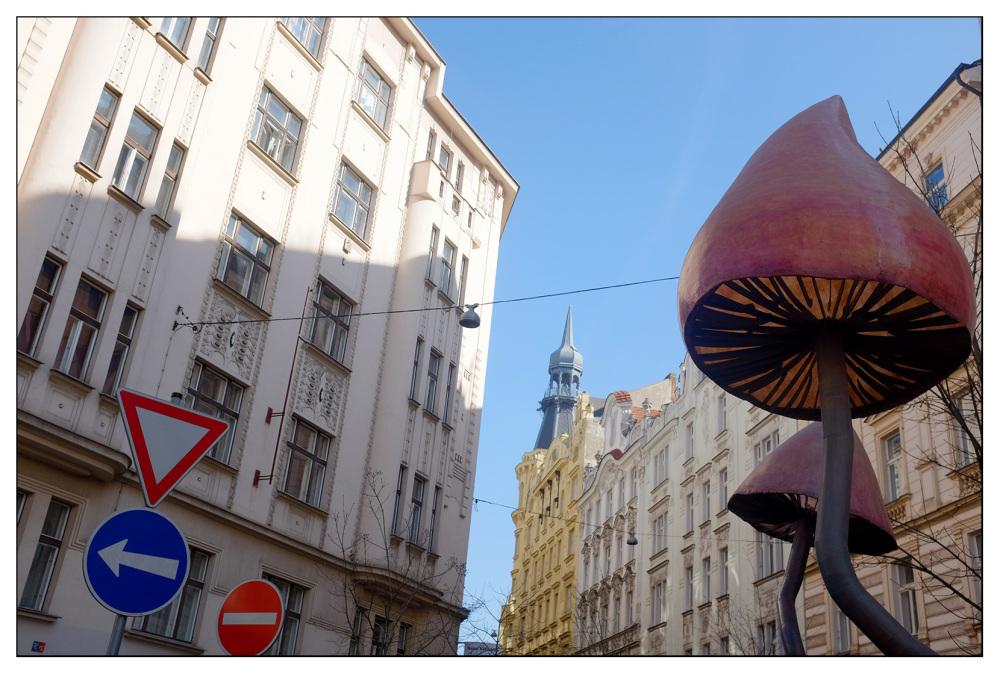 magic mushrooms psychedelic city prague