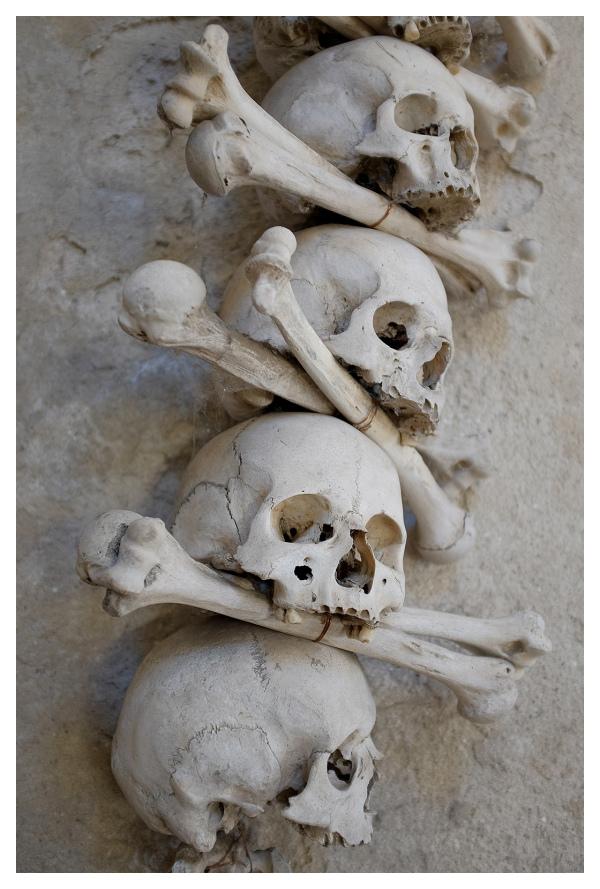 Skulls in Ossuary, Sedlec