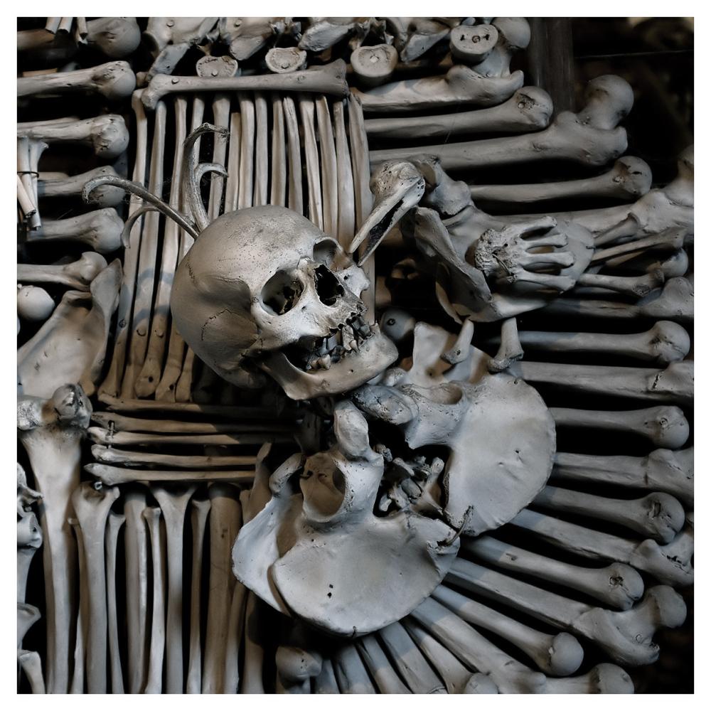 strange crest sedlec ossuary czech