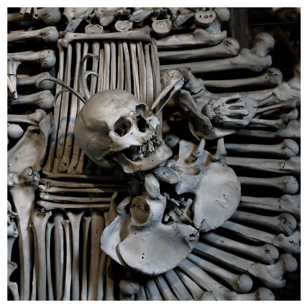 Crest of Old Bones