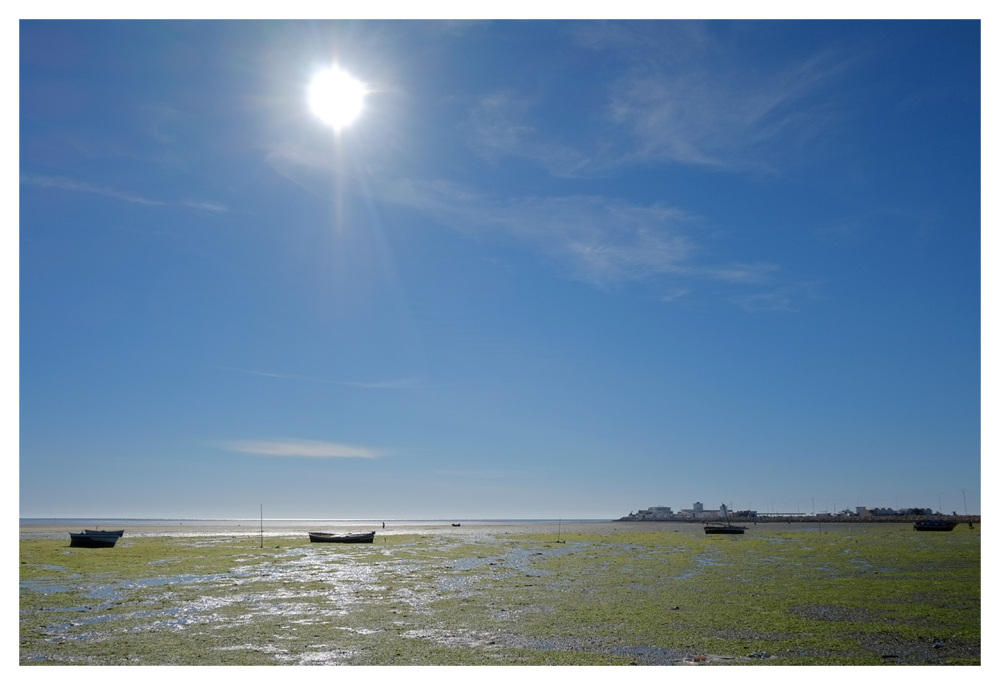 tide sea boats seaweed desert coast tunisia