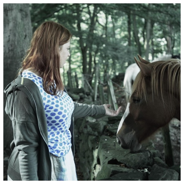 kitty meeting horse woods belper