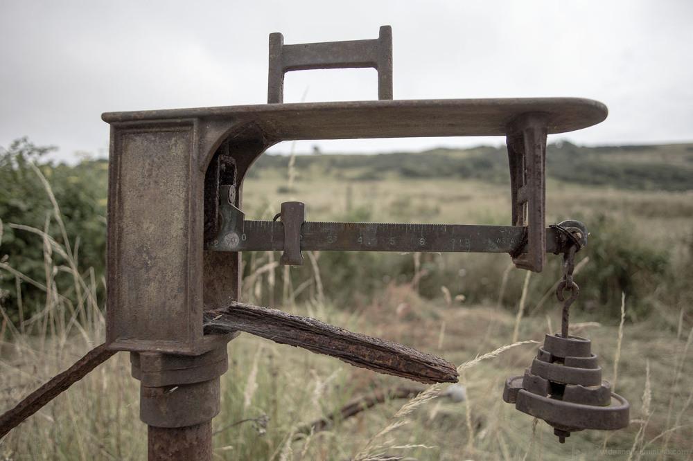 weights measures rusty