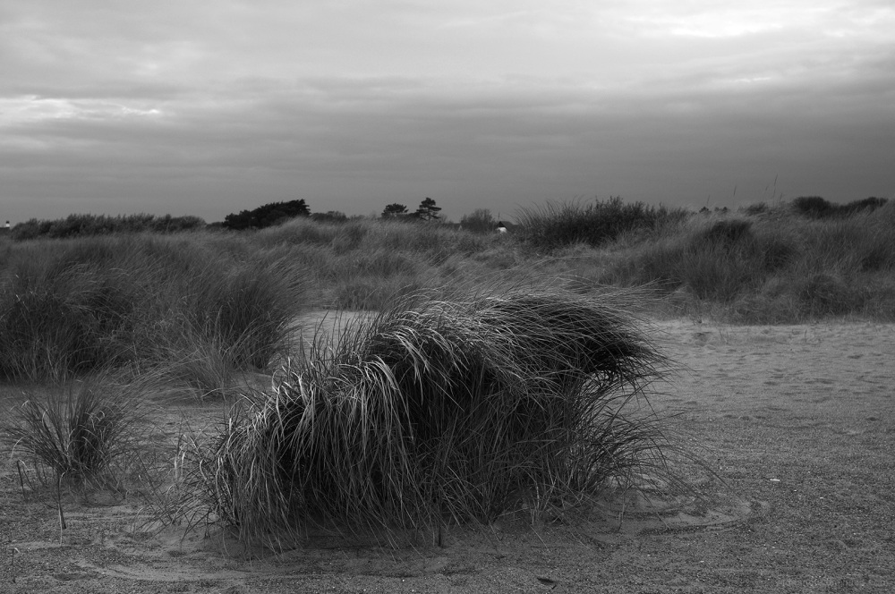skegness beach karen katie seaside windy