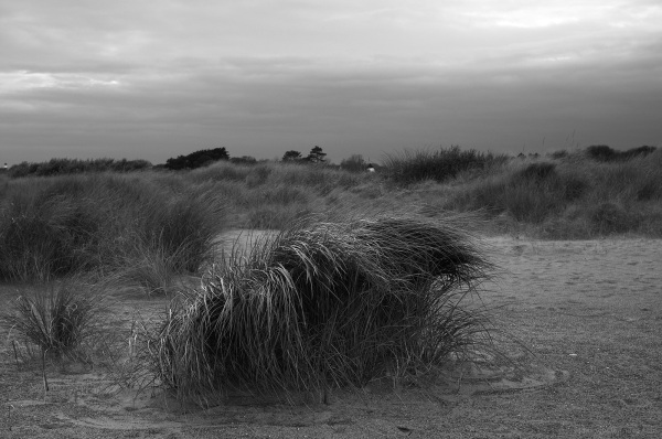 Windy Day on Skeggy Beach