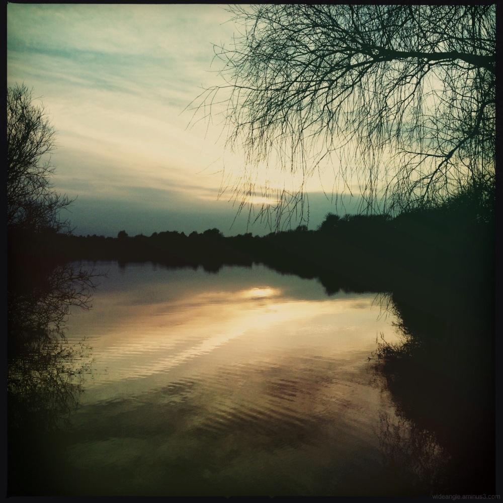 Photo of attenborough nature reserve