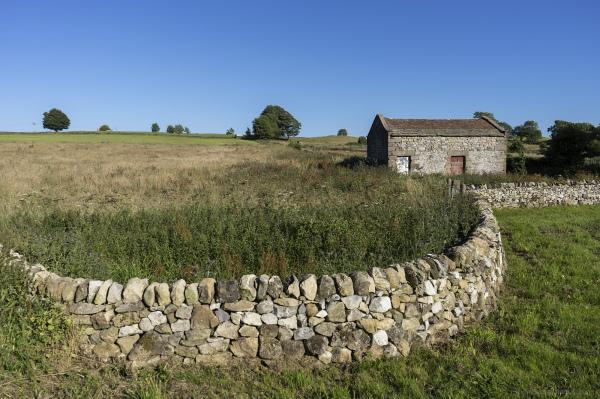Dry Stone Wall, Derbyshire