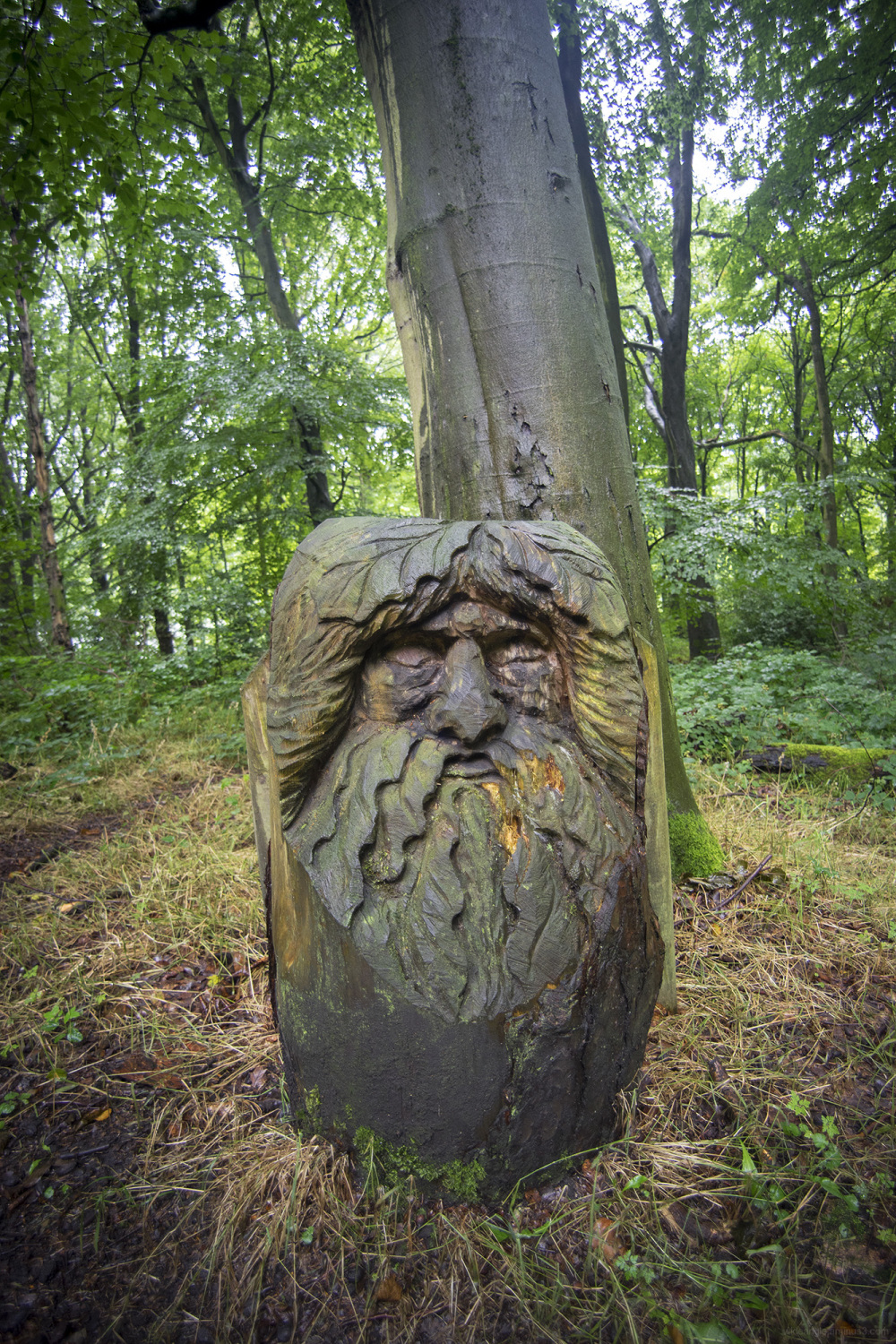keeper glade man woods carving