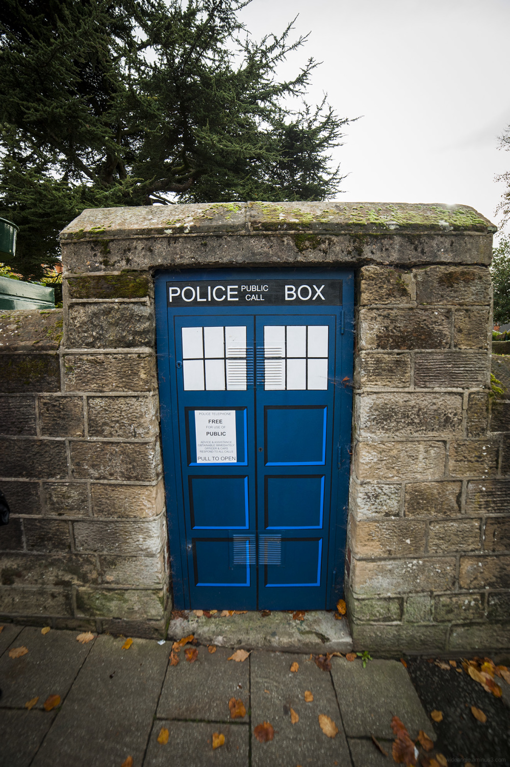 tardis belper arts high street