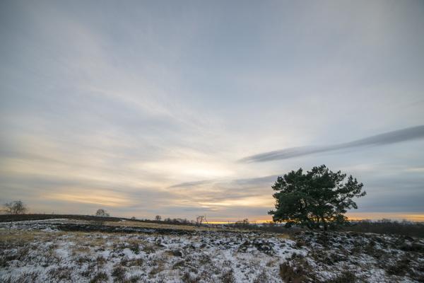 stanton moor nine ladies stone circle winter walk