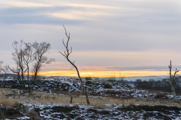 Sun Setting, Stanton Moor