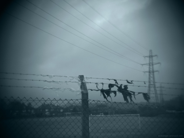 B&W Caught on a Wire Fence